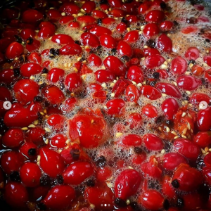 Rosehips cooking in water
