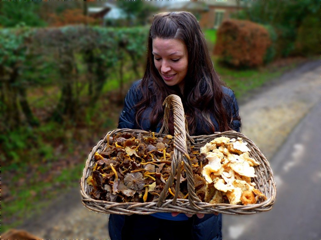 Lisa with a basketful of winter chanterelles and hedgehog mushrooms